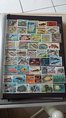 "45 timbres ""Poissons"" (lot 5)"