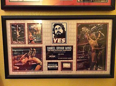 Daniel Bryan Wrestlemania 30 WWE Plaque Hand Signed With Ring Rope