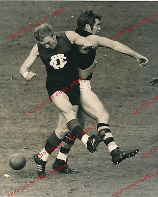 "Darryl Herrod Fitzroy Bill Barrot Tigers B & W Press photo 25cm X 20cm (8""X10"")"