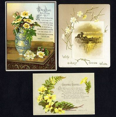 HILDESHEIMER Published 3 Victorian Greent Cards 1880's NEW YEAR Christmas FLORAL
