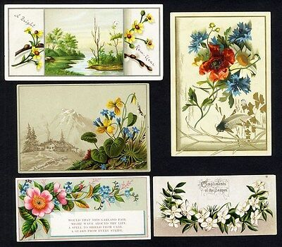 COUNTRYSIDE and Flowers Mountains & Streams 5 Victorian Greeting Cards 1880's