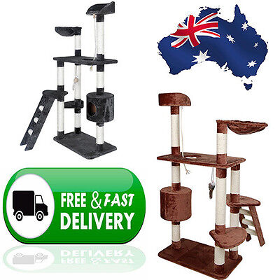 Large Cat Kitten Grooming Scratching Tree Post Gym Furniture Tower with Ladder