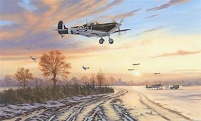 "Battle Of Britain Pilot Signed ""Spitfires Safely Home"" by Stephen Brown"