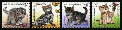 2017 Belarus, pets, cats, kittens, set 4 stamps, MNH