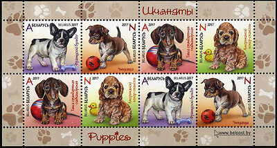 2017 Belarus, pets, dogs, puppies, mini sheet, MNH