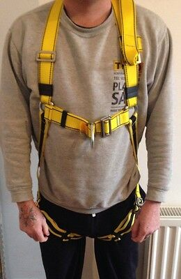 Big Ben Safety Fall Arrest Harness With Double Lanyard