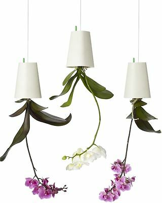 Boskke Recycled Sky Planter Small Triple Pack - 3 x White