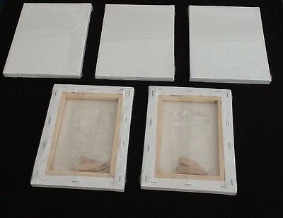 6  x Linen blank canvases 70x100 cm