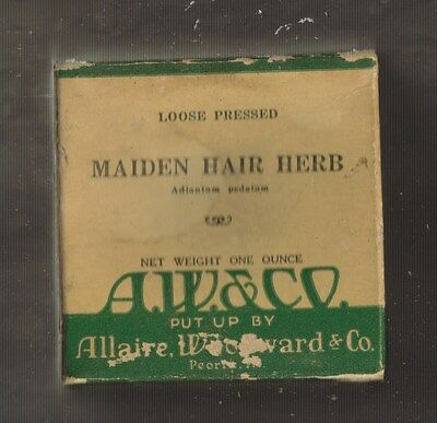ANTIQUE Loose Pressed MAIDEN HAIR HERB UNOPENED CARDBOARD Allaire Woodward & Co.