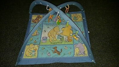 Winnie the pooh baby gym play mat