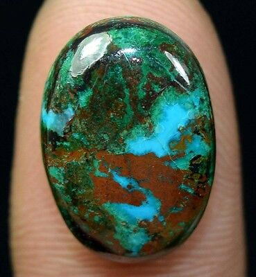 14.30 Cts. 100% Natural Chrysocolla Oval Cab Loose Gemstones Platinum_Gems