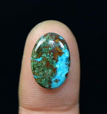 7.85  Cts. 100% Natural Chrysocolla Oval Cab Loose Gemstones Platinum_Gems