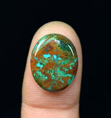 9.60  Cts. 100% Natural Chrysocolla Oval Cab Loose Gemstones Platinum_Gems