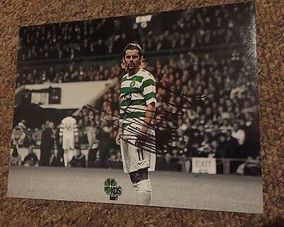 Paul Hartley Hand Signed Glasgow Celtic 8x6 Photo Scotland Hearts Aberdeen