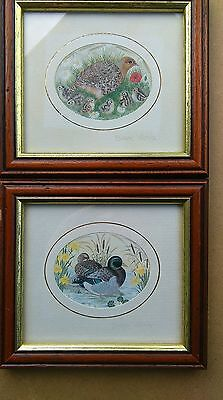 Pair prints, Sharon Jervis. Wild fowl. Signed on mount.