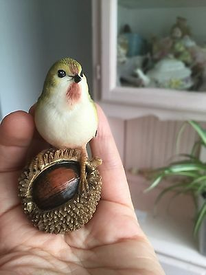 Shudehill Ornament  Bird On A Conker figurine Finch Tit Autumn