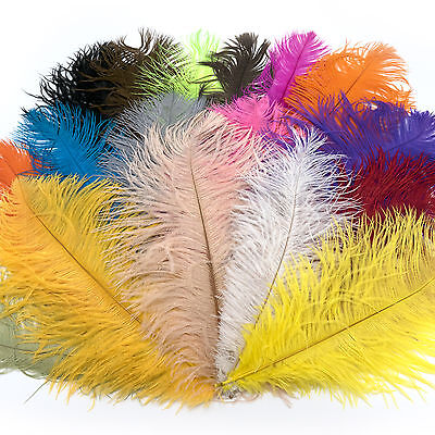 NATURE/'S SPIRIT 12 OSTRICH BELLY SPEY PLUMES FEATHERS FOR FLY TYING PICK COLOR