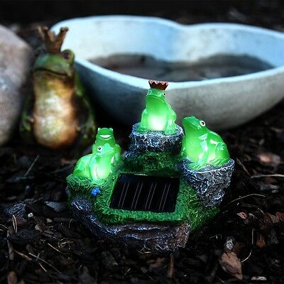 LED FROGS Solaire