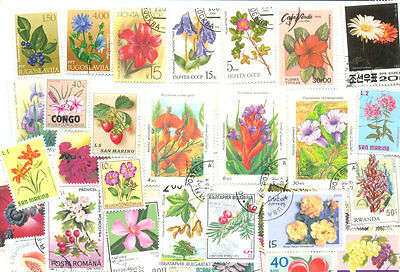 Flowers-Plants-some fruit-trees shrubs-300 all different collection