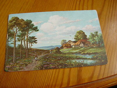 TOP5207 - Postcard - Landscape, Possibly Wexford, Ireland 1905