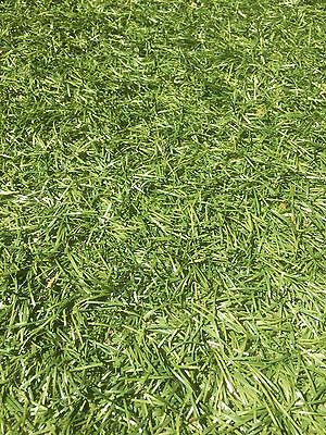 Synthetic Turf 0.5m By 6m