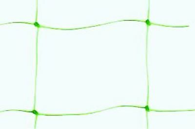 Nutley's 10 x 2 m Pea and Bean Netting - Green