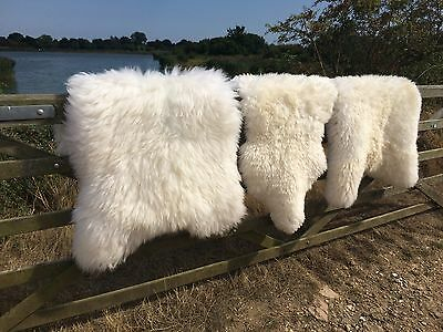 New Luxury British Thick Sheepskin Rugs/Ivory/Cream XXL Large