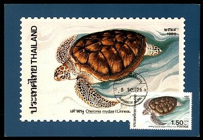 Thailand Sea Turtles 1986 Maximum Card First Day Of Issue