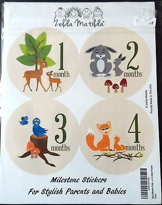 Baby Milestone Stickers Unisex Photography Photo Prop Keepsake Zelda Matilda