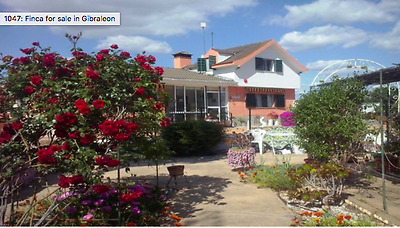 Spanish House - Gibraleon , Andalusia Stunning 3 Bedroomed House/finca