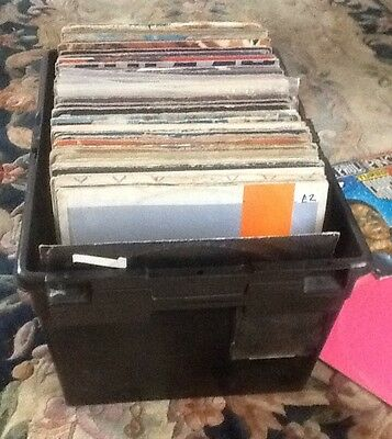 "JOB LOT REGGAE / LOVERS 12""     182 in total some albums !!"