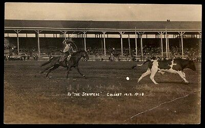 Canada Calgary Stampede 1912 Cowboy Chasing Steer Real Photo Postcard