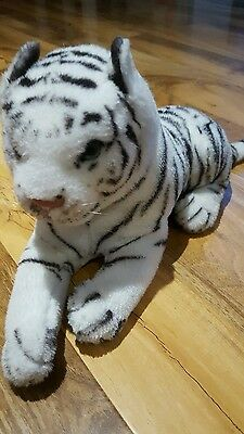 Cuddly white tiger small loved and looked after