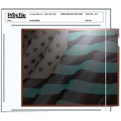 """Print File Negative Pages Holds One 4"""" X 5"""" Sleeved Negative or Transparency, Pa"""