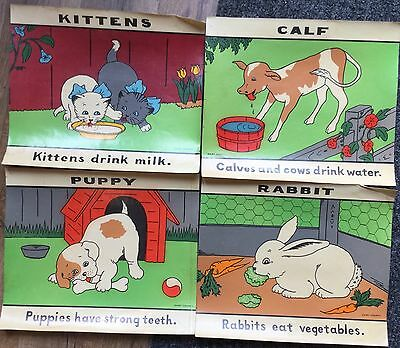 8 1950's Dairy Council Milk Advertising Posters Animals Dog Cat Rabbit Duck VGC
