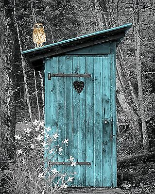 Teal Gray Wall Art Photo Print Vintage Outhouse Owl Bath Decor Bathroom Picture