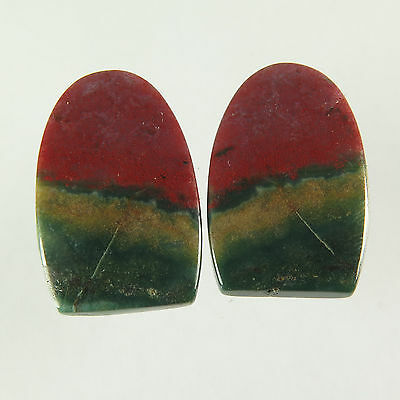 Excellent Real 21x14 mm BLOODSTONE 1 Pair Fancy Flat Gemstone 20.90 Cts Exporter
