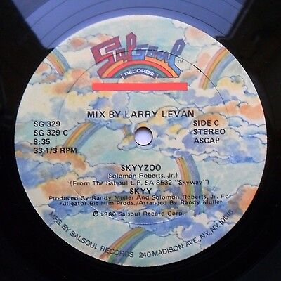"""Soul/Funk 12"""" SKYY - SKYYZOO/HIGH - SALSOUL RECORDS - MP3"""
