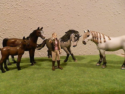 Schleich horse and girl lot