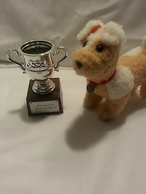 American girl retired 2013 pet dog & best in show trophy