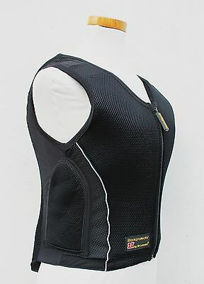 Sir Lancelot Backprotector 3X (level2)