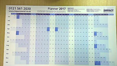 Wall Year Planner 2017 A2 (595mm x 420mm)