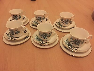 Vintage Queen Anne bone china plate, cup and saucer trio X 6