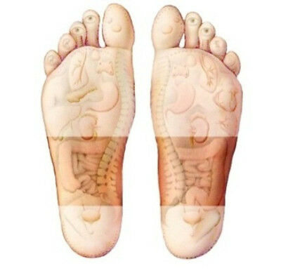 1 Week Course Chinese Medical 14 Detox Foot Pads & 14 Adhesive Sheets