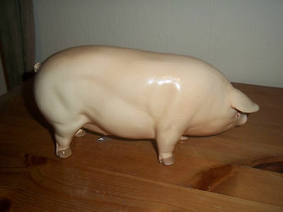 Uncommon Coopercraft china pig with stamped name, not a sticker, used, VGC.