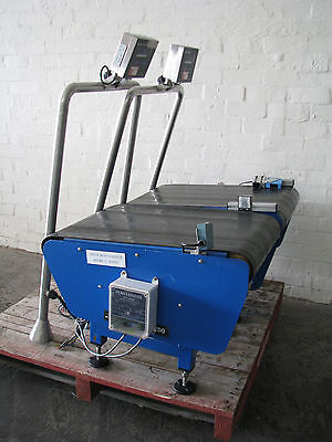 Conveyor Checkweigher Check Weigher - Mettler Toledo