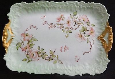 Hand Painted Limoges France by Coiffe Factory Dresser Tray, 1890's Multi-color