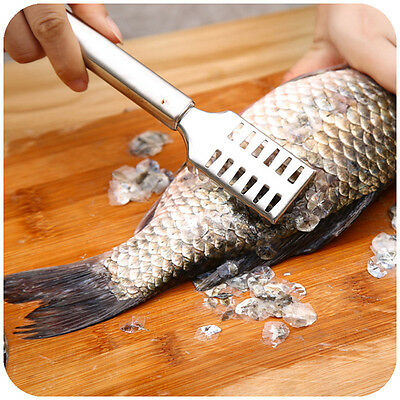 Stainless Steel Fish Scaler Remover Kitchen Fish Scale Scraper Cleanning Tool