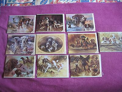 Collection of 10 Dog Greeting Cards by Artist Mick Cawston - Sally Mitchell Card