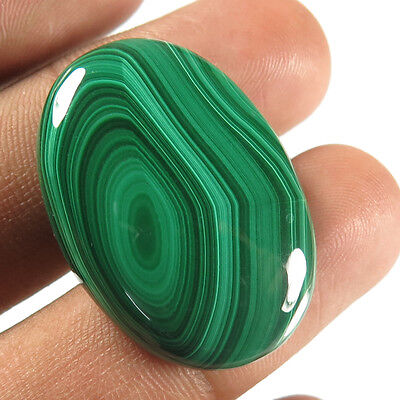 Elegant Oval Cabochon 51.30 Cts. Natural MALACHITE Gemstone 31x22 mm For Jewelry